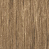 palette_com_icc_natural_medium_blonde_170x170