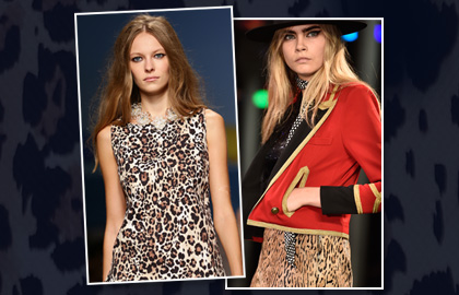 Leopard Print Fashion and Hairstyles