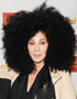 2013 Hairstyles: Cher